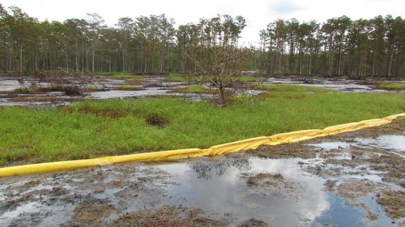The Bayou Corne Sinkhole: A massive oil and gas disaster you've probably never heard of