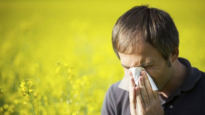 Get Ready for One of the Worst Allergy Seasons Yet