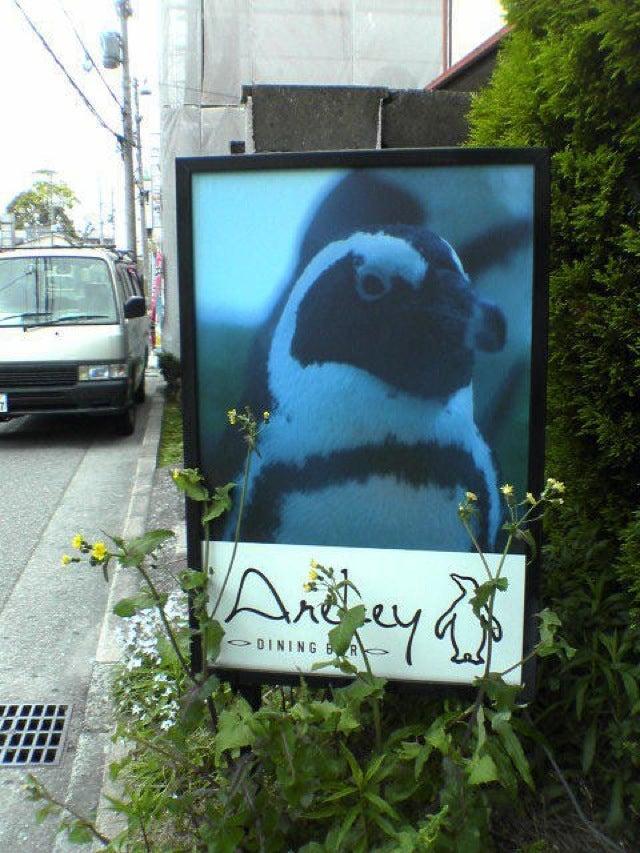 Japan Has Too Many Penguin Bars