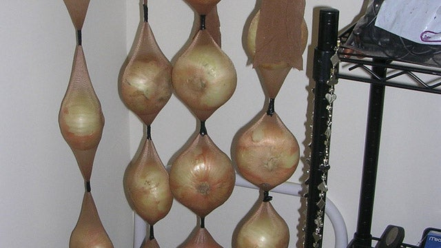 Store Onions in Pantyhose to Make Them Last Longer