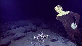 There Is A Wooden Zombie Lurking At The Bottom Of The Pacific Ocean
