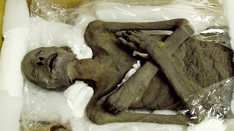Ancient Mummies Had High Rates of Heart Disease, Too