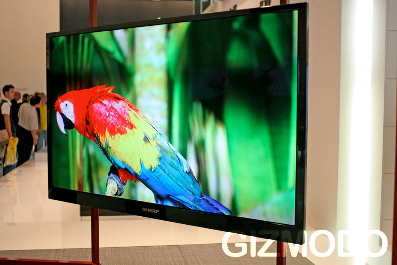 Sharp's Uber-Thin TV to Arrive in 2010, Expect a 131-Inch Version