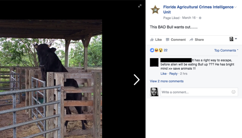 This Goofy Repository of Florida Farm Crimes Is My New Favorite Facebook Page