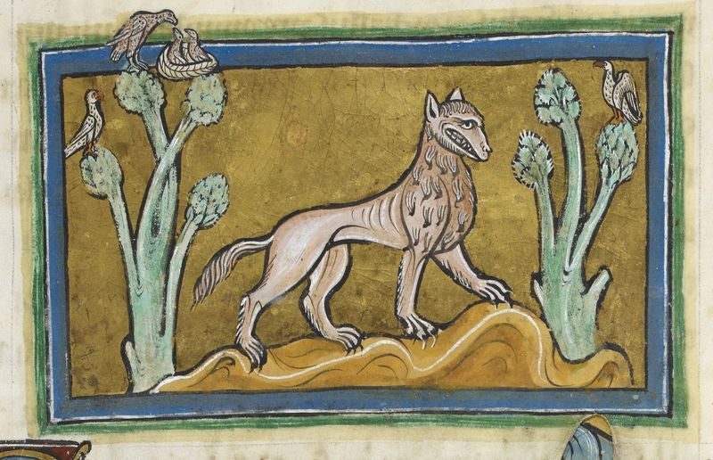 A Bestiary Of Largely Forgotten Medieval Creatures