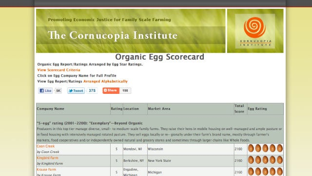 Check the Organic Egg Scorecard to Make Sure You're Eating Good Eggs