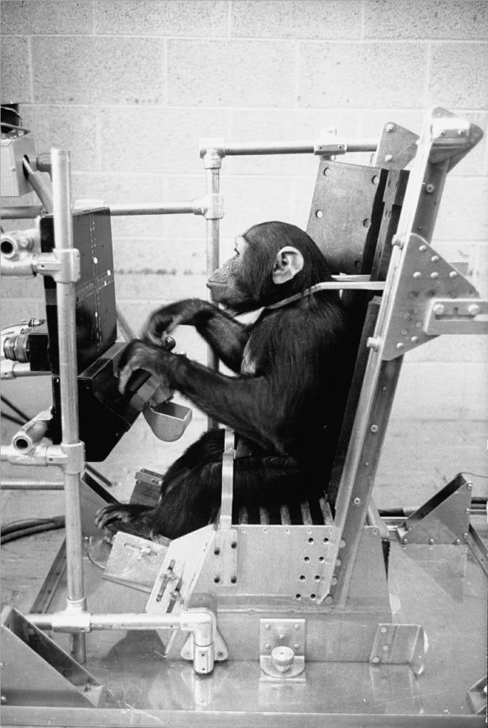 The Courageous Blastoff of Ham the Astrochimp