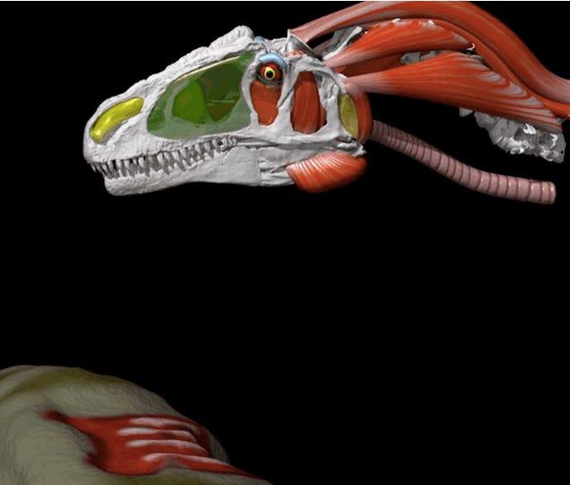 Allosaurus Ate Like a Terrifying Two-Ton Falcon