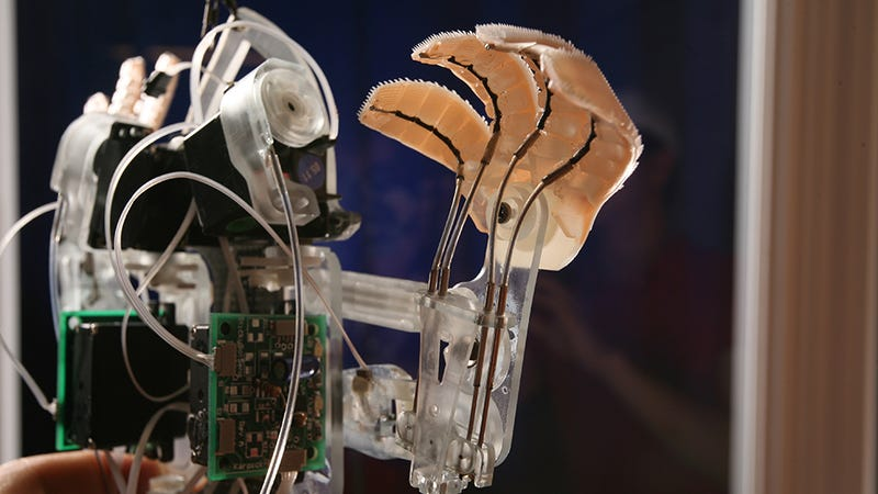 Robo-Whiskers and Three Other Cool, Creepy, Animal-Inspired Machines