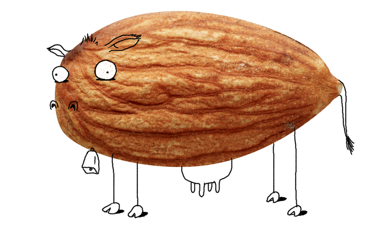 A New Size Of Almond Milk--And With It, A New World