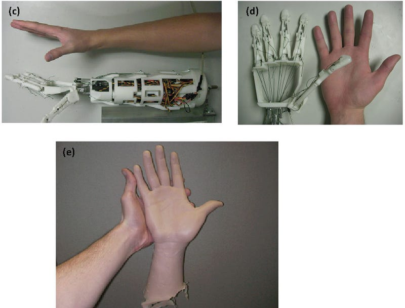 Keyboard-Friendly Robotic Hand Is Probably Harmless