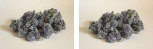This Is Officially the Largest Collection of Belly Button Lint in the World