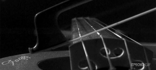The strings of a violin deform wildly when you play it