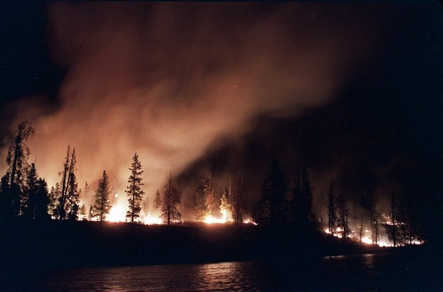 Yellowstone National Park Will Destroy Us All