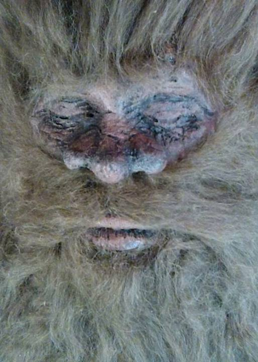Is this really the face of Bigfoot?