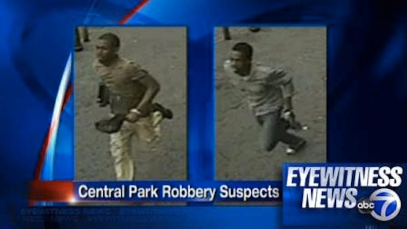 Bizarre iPad-Carrying Jogger Mugged in Central Park