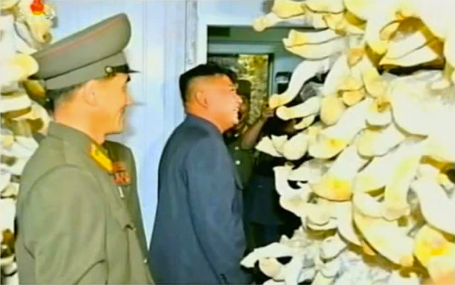 Turning North Korea into the Mushroom Kingdom