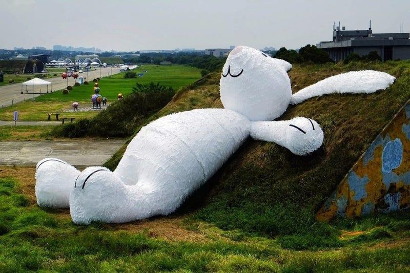 Giant Rabbit Appears, Lays Down On Farmland