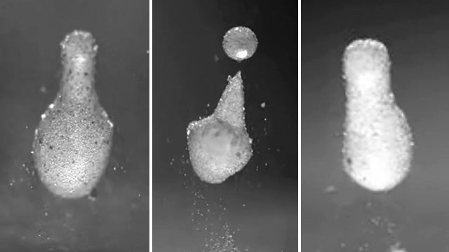 Amazing Magic Powder Freezes Water Drops As They Bounce
