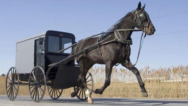 Ohio Amish Under Investigation for Beard-Theft Ring