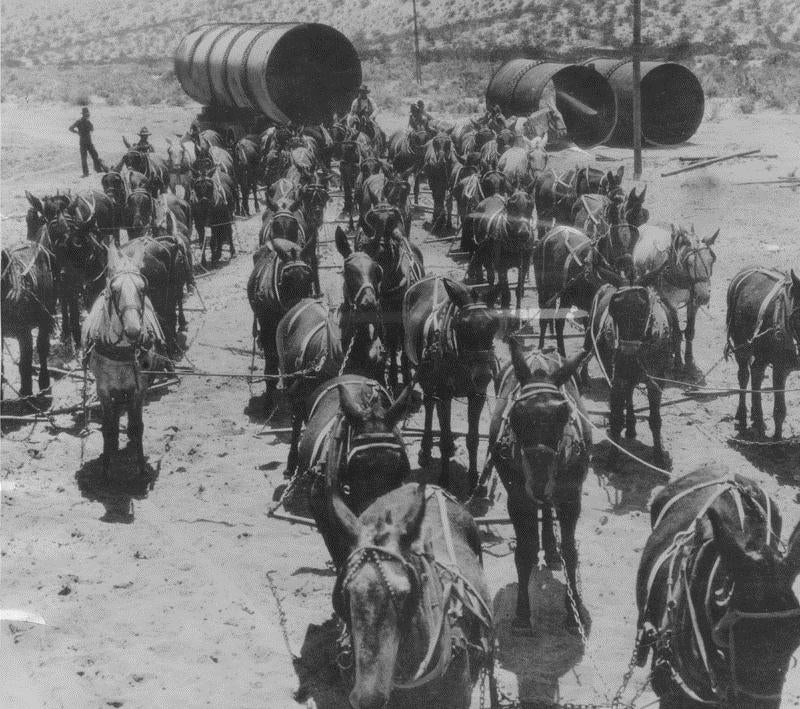 The Los Angeles Aqueduct Turns 100, or The Mules That Built L.A.