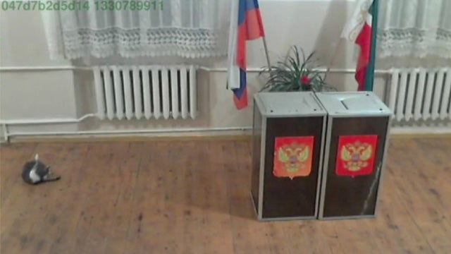 The Strange Images Captured By Russia's 180,000 Election Webcams