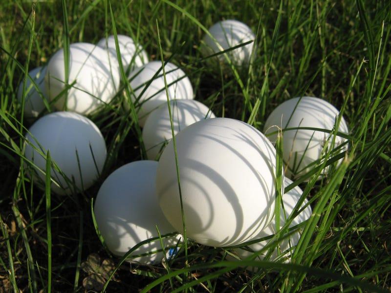 Pilot Error Sends Ping-Pong Balls Raining Down on Idaho Interstate