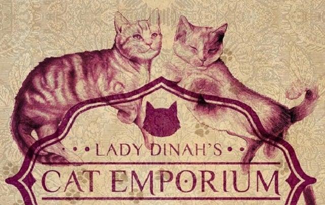Nem akarom elhinni: hamarosan nyit az első macskakávézó Londonban