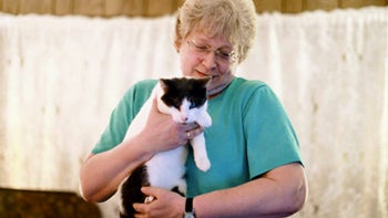 Cat Lady Finds Long-Lost Cat Thanks To Magic Of The Internet (And Another Cat Lady)