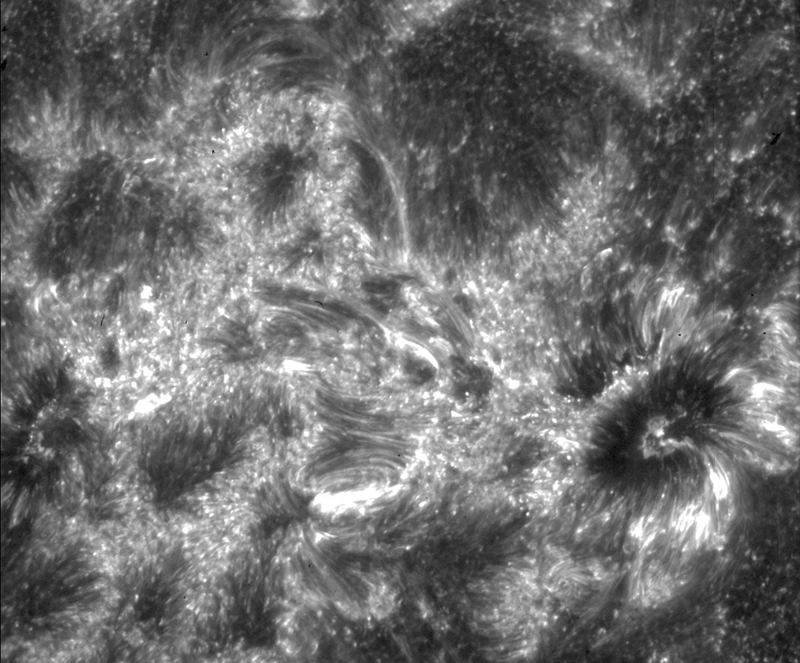 NASA Images Reveal a Part of the Sun We've Never Seen Before