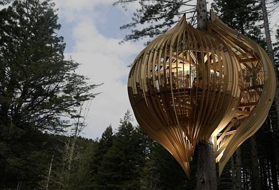 Treehouse Restaurant Built Around Redwood Like Beautiful Fungus