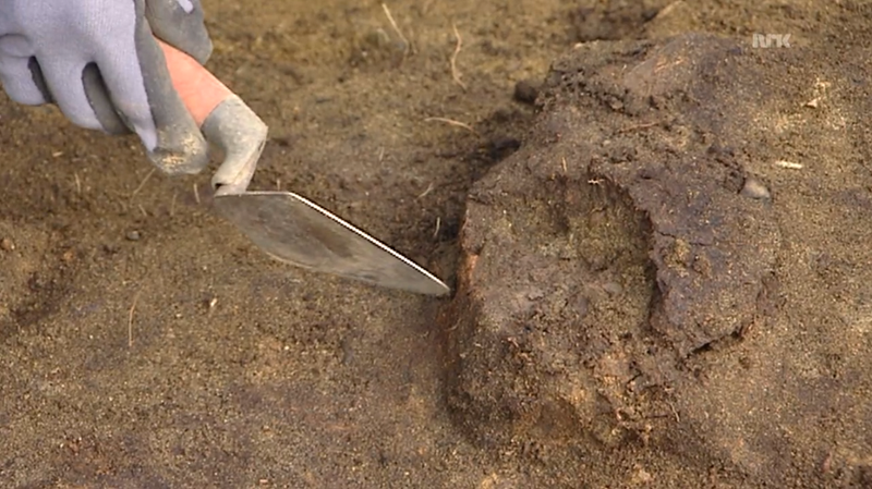 An 8,000 Year-old Skull Has Been Found With Preserved Brain Matter