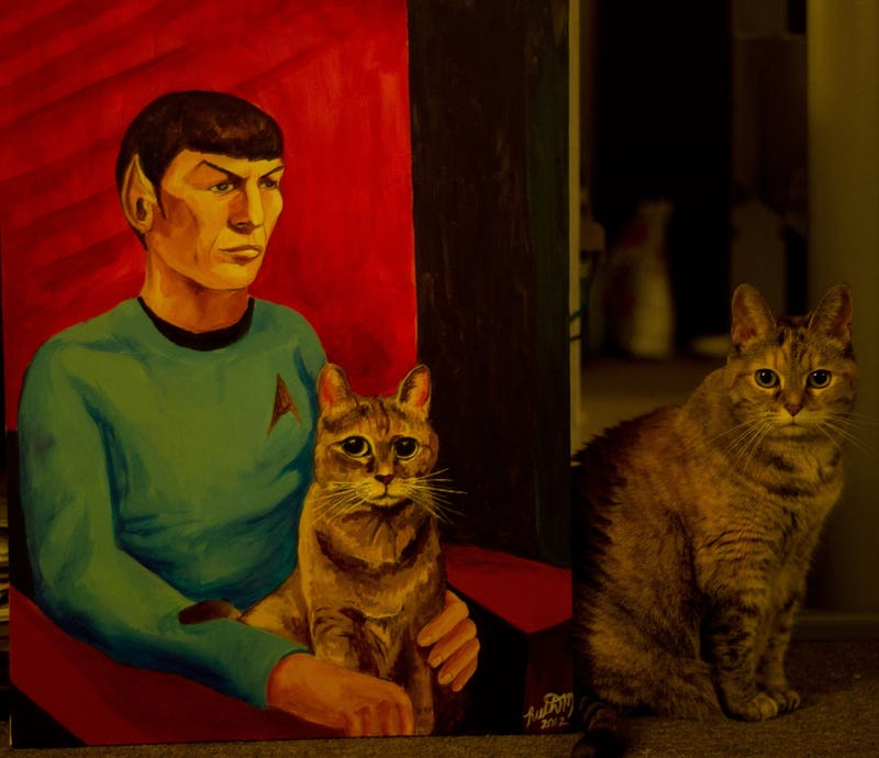 For $250, an indescribable portrait of Spock holding a cat could be yours