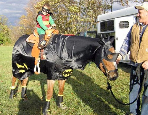 Creepy Horse Tailor Offers Halloween Costumes For The Discerning Pony