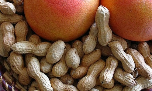 Use Unshelled Peanuts to Stop Food-Shuffling During Transportation