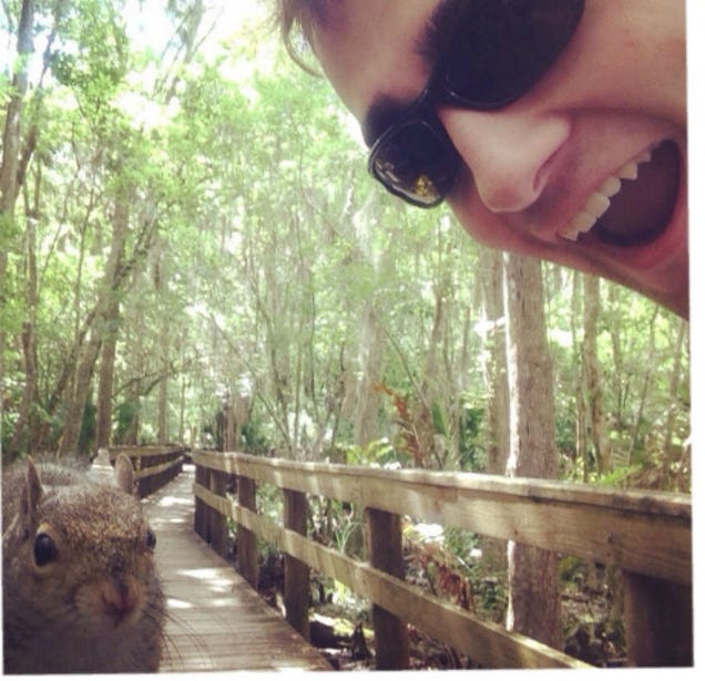 Murderous Squirrel Attacks Man Taking Selfie