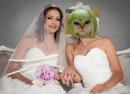 Izzy & Katmelon Renew Vows