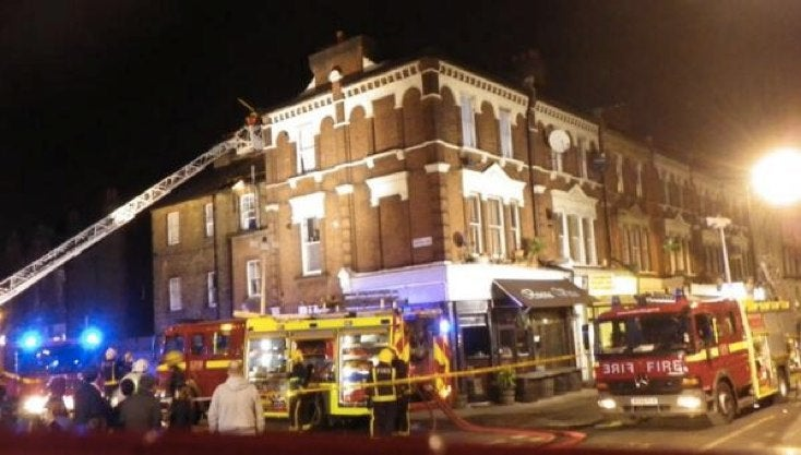 Cigarette-Smoking Bird Almost Burns Down London Apartment
