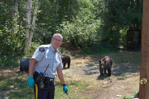 The Ultimate Marijuana Farm Security System: Bears