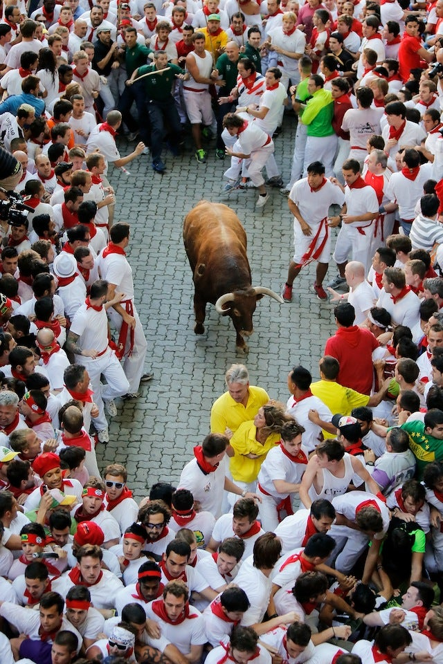 Where's Rex? Photos Of A Terrified Rex Ryan Running With The Bulls