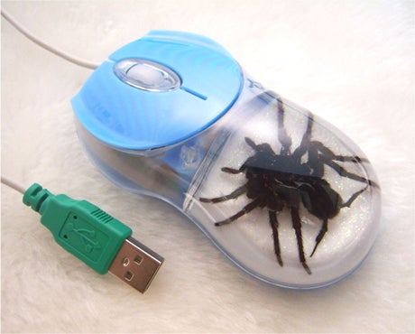 Spider Mouse Is Perfect for Arachnophobes