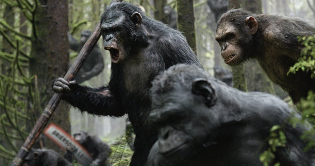 Great Ape: Dawn Of The Planet Of The Apes, Reviewed