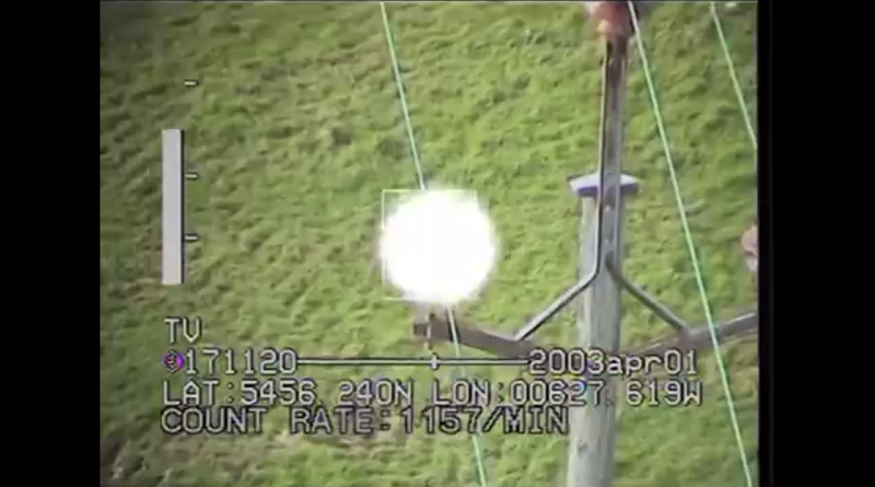 Most animals can see the flashing and glowing of power lines