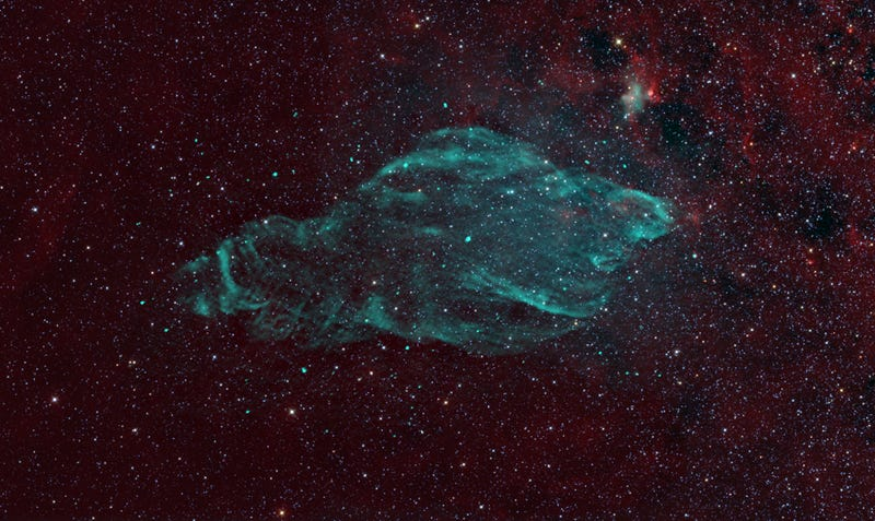 Meet the nebula that looks just like a lazing manatee