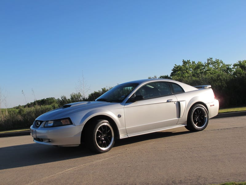 "SN-95 ""New Edge"" Mustangs"