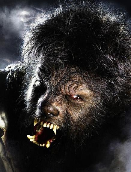 The Wolfman's Moulting: All The Reshoots, Redos And Re-Edits