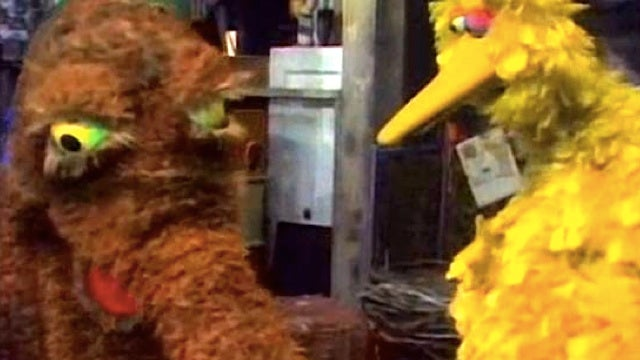 Become the next Mr. Snuffleupagus at the Sesame Street open auditions