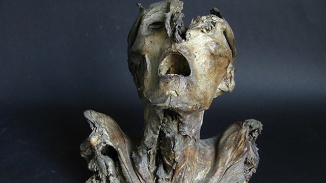 Archaeologists uncover Europe's oldest preserved human dissection