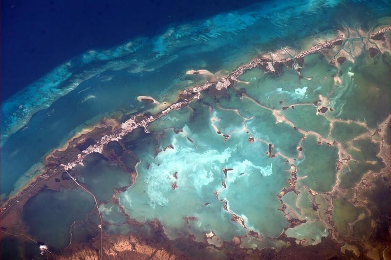 Latticework in the Florida Keys