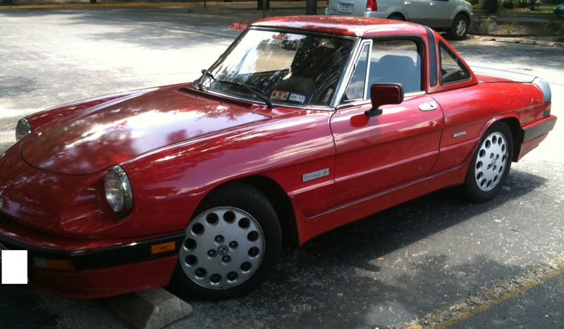 Alfa Romeo Spider Gallery